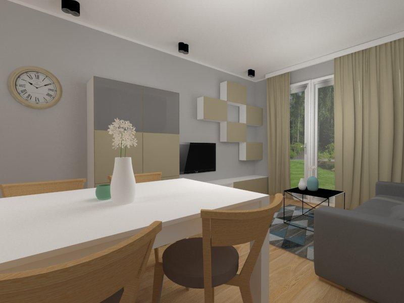 Jasny salon z kuchnią w mieszkaniu - widok