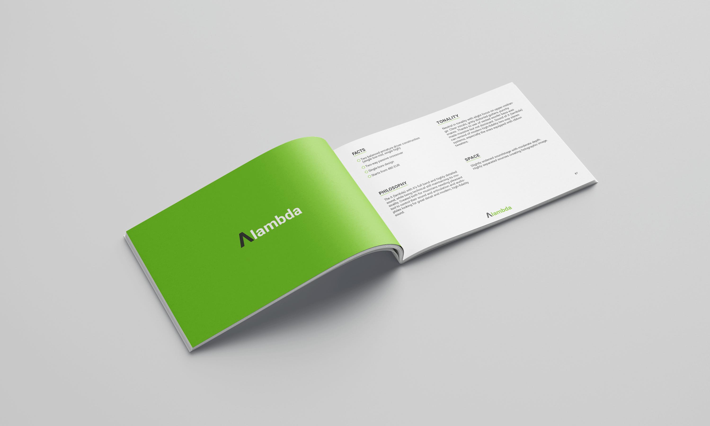 Projekt katalogu produktów Lime Ears - strona opisowa produkty Alambda