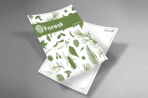 projekt papieru firmowego byforest moje projektowanie