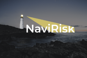 projekt identyfikacji wizualnej navirisk
